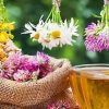 Curso Naturopatía y Terapias Naturales Medefor