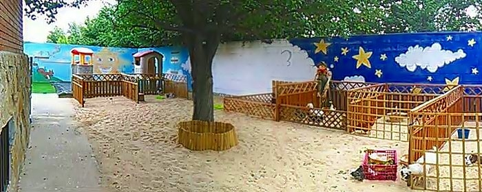 Prácticas de Auxiliar de Jardín de Infancia (Camarma – Madrid)